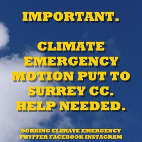climate emergency motion1