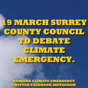 climate emergency motion3