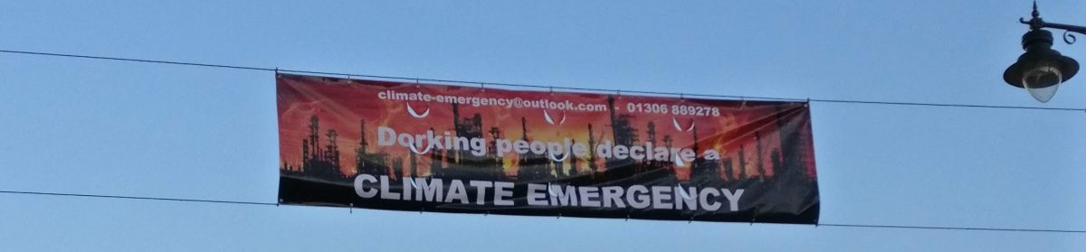 Dorking Climate Emergency