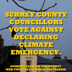 surrey councillors vote against climate emergency