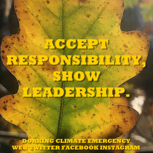 accept responsibilty show leadership