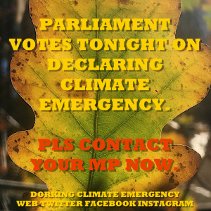 parliament vote contact MP