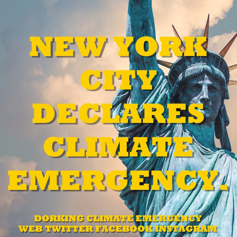 new york climate emergency