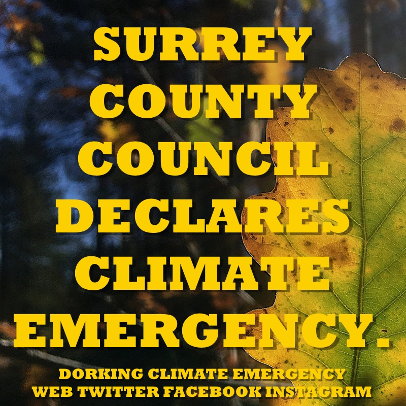 Surrey Declares Climate Emergency