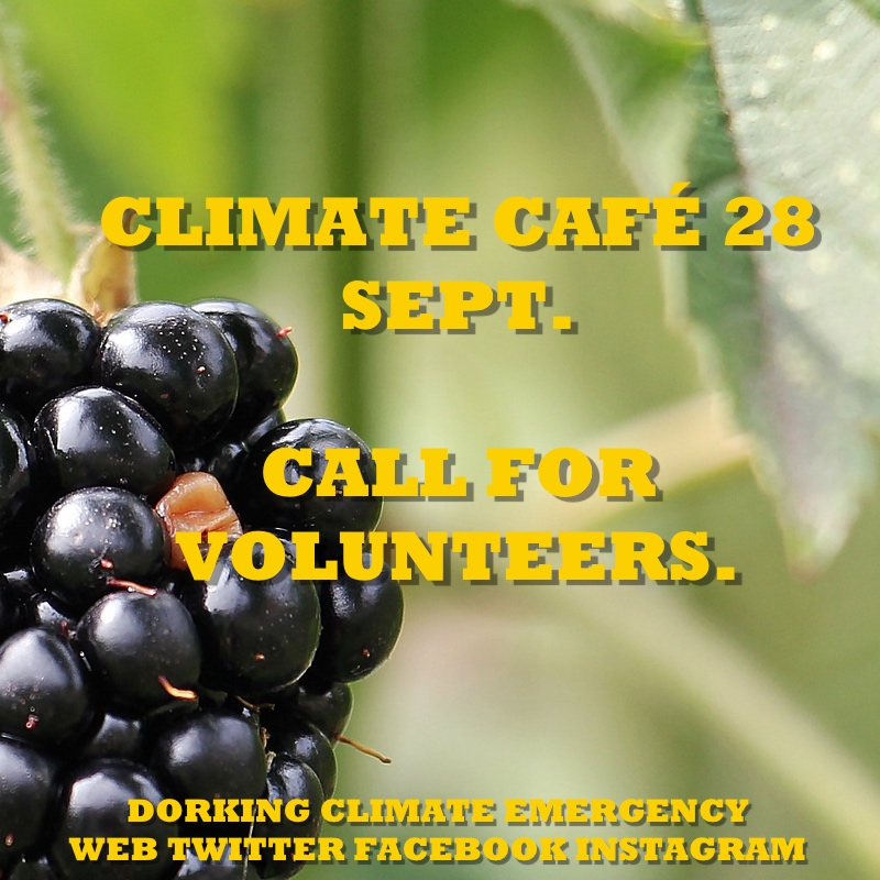 climate cafe ept call for volunteers