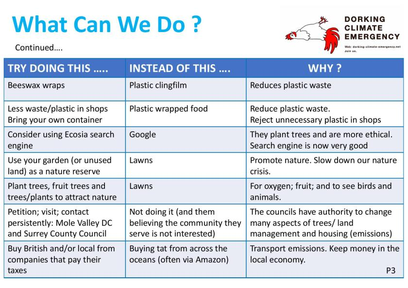 DCE What Can We Do Climate Café Jan 19-page-003