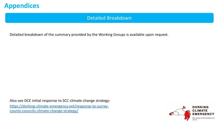 DCE WG review of SCC Climate Action v0-page-010